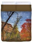 Sedona Fall Colors Duvet Cover