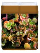 Seeing Succulents Duvet Cover