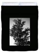 September Tree ... Duvet Cover