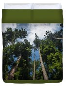 Sequoia Park Redwoods Reaching To The Sky Duvet Cover