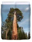 Sequoia Trees Duvet Cover