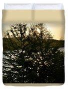 Setting Sun Through A Cypress Tree Duvet Cover