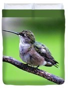 Shades Of Green - Ruby-throated Hummingbird Duvet Cover