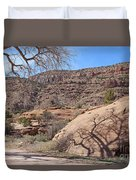 Shadow Tree Dominguez-escalante Canyon Colorado Duvet Cover