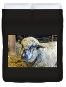 Sheep 1 Duvet Cover