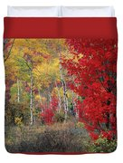 Sheep Canyon In Autumn Duvet Cover