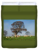 Sheep In Somerset Duvet Cover