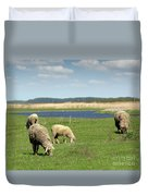 Sheep On Pasture Nature Farm Scene Duvet Cover