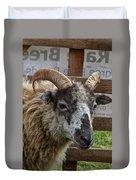 Sheep One Duvet Cover