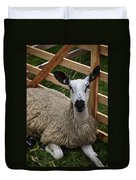 Sheep Two Duvet Cover
