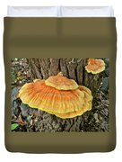 Shelf Fungus - Basidiomycota Duvet Cover