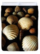 Shell Art - D Duvet Cover