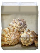 Shell Still Life Duvet Cover