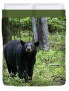 Shenandoah Black Bear Duvet Cover
