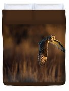 Short-eared Owl Banking Duvet Cover
