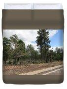 Show Low Landscape Duvet Cover