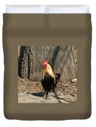 Showy Rooster Posed Duvet Cover