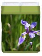 Shreve's Iris Duvet Cover