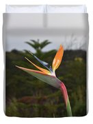 Side View Of A Beautiful Bird Of Paradise Flower  Duvet Cover
