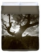 Silhouette Of A Gnarled Tree - Sepia Duvet Cover