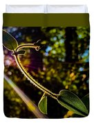 Silhouette Of Climbing Vine On A Sunny Afternoon Duvet Cover