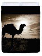 Silhouetted Camel, Sahara Desert, Douz Duvet Cover