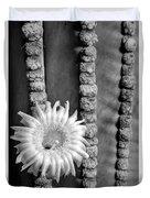 Silver Desert Jewel Duvet Cover