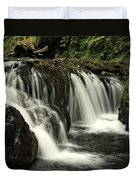 Silver Falls State Park Duvet Cover