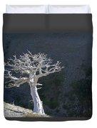 Silver Tree Glacier Park Montana Duvet Cover