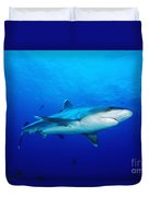Silvertip Shark In Thailand Duvet Cover