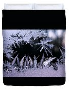 Silvery Window Fronds Duvet Cover