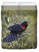 Sing Me A Song, Red-winged Blackbird Duvet Cover