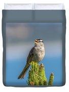 Singing Sparrow Duvet Cover