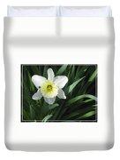 Single Daffodil Duvet Cover