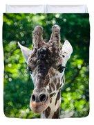 Single Giraffe Duvet Cover
