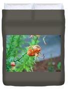 Single Orange And Black Tiger Lily Duvet Cover