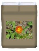 Single Orange Wild Flower Duvet Cover