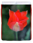 Single Red Duvet Cover
