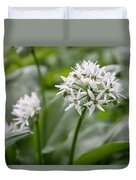 Single Stem Of Wild Garlic Duvet Cover