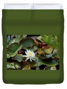 Single Water Lilly  Duvet Cover