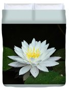 Single While Water Lily On Black Background Duvet Cover