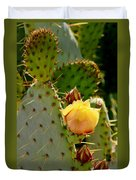 Single Yellow Cactus Bloom 050715a Duvet Cover