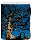 Sitting In Tree 2 Duvet Cover by Scott Sawyer