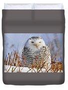 Sitting Snowy Owl Duvet Cover