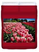 Skagit County Tulip Festival Duvet Cover