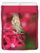 Skipper Butterfly Duvet Cover