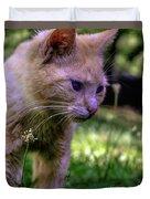 Skippy Feral Cat Portrait 0369b Duvet Cover