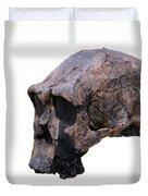 Skull Of Homo Erectus Duvet Cover
