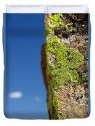 Sky Lichen Duvet Cover