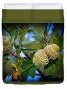 Sky Lit Oak Acorns Duvet Cover